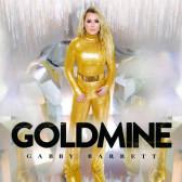 Goldmine (Vinyl)