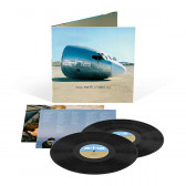 Minor Earth, Major Sky (Deluxe Vinyl Edition)