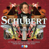 The Schubert  Experience