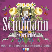 The Schumann Experience