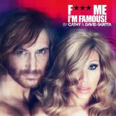 F*** Me I'm Famous (Ibiza Mix 2012)