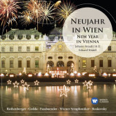 Neujahr In Wien - New Year In Vienna