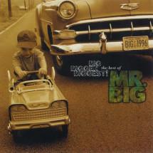 Best Of Mr. Big