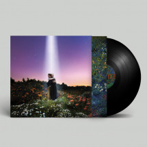 Let's Just Say The World Ended A Week From Now, What Would You Do? (Vinyl)